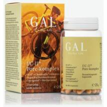 PORC-KOMPLEX UC-II® (60) GAL