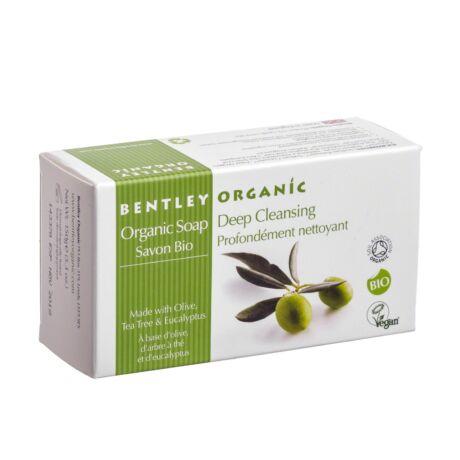 Bio olívaszappan teafaolajjal és eukaliptusszal (150 g)